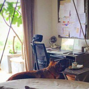 Akshay Kumar Twinkle Khanna home picturess 8